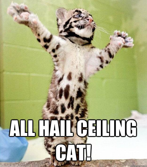 All hail Ceiling Cat!