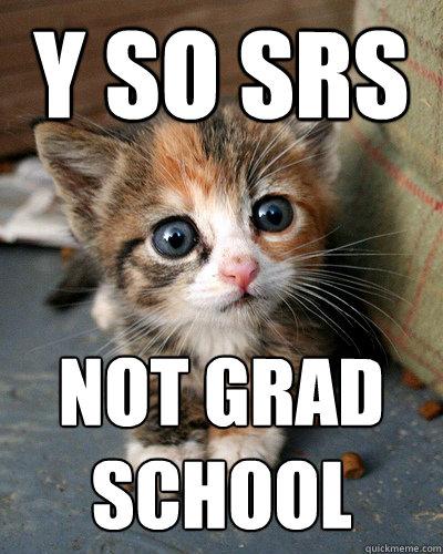y so srs not grad school  Thesis Kitten