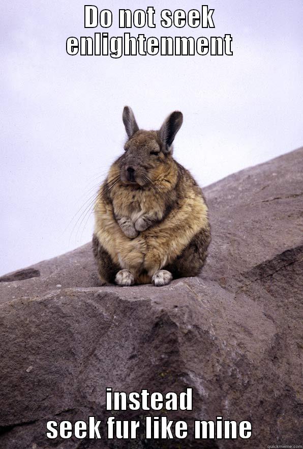 DO NOT SEEK ENLIGHTENMENT INSTEAD SEEK FUR LIKE MINE Wise Wondering Viscacha