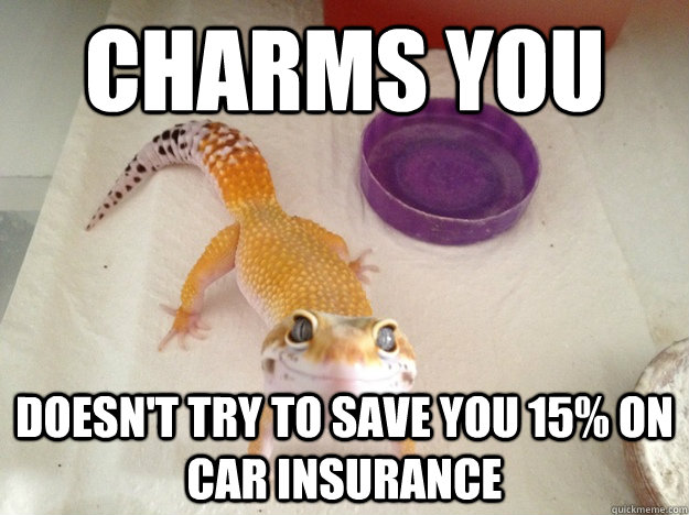 Charms YOu Doesn't Try to save you 15% on car insurance