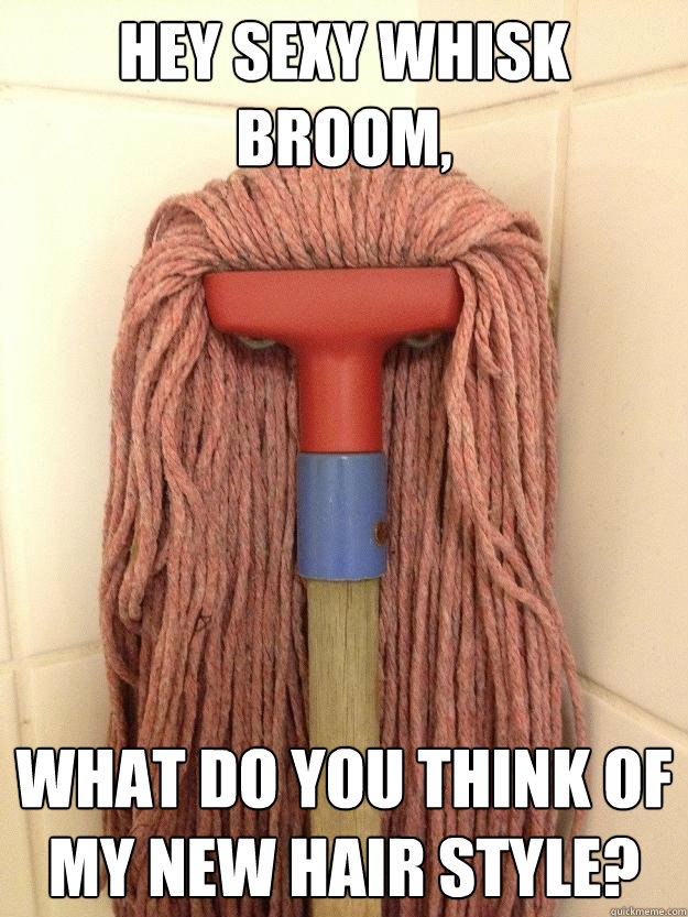 Hey sexy Whisk Broom, What do you think of my new hair style?  Insanity Mop