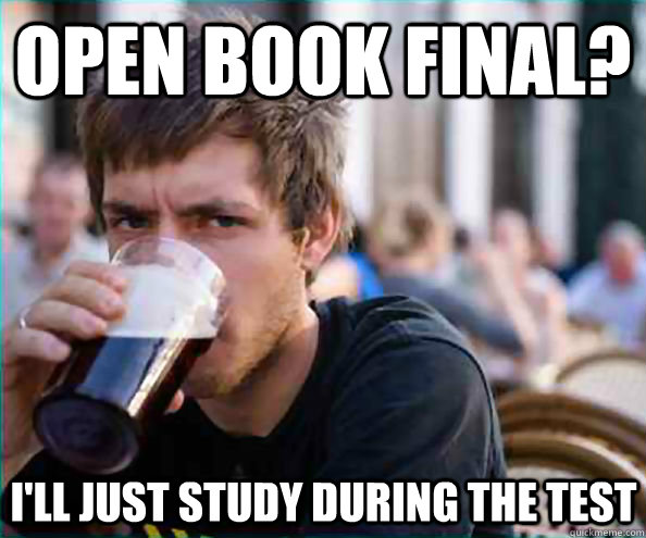 open book final? i'll just study during the test