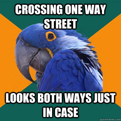 crossing one way street looks both ways just in case - crossing one way street looks both ways just in case  Paranoid Parrot