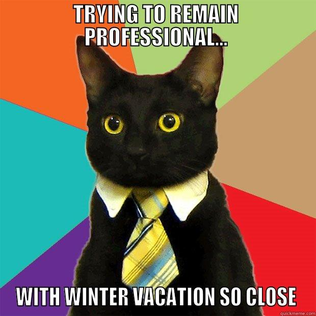 TRYING TO REMAIN PROFESSIONAL... WITH WINTER VACATION SO CLOSE Business Cat