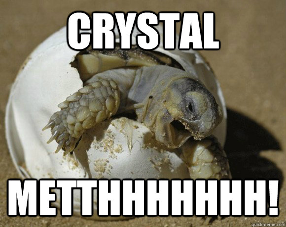 crystal metthhhhhhh! - crystal metthhhhhhh!  Turtle Meth