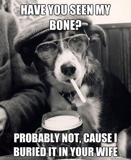 Have you seen my bone? Probably not, cause I buried it in your wife - Have you seen my bone? Probably not, cause I buried it in your wife  Hipster Dog