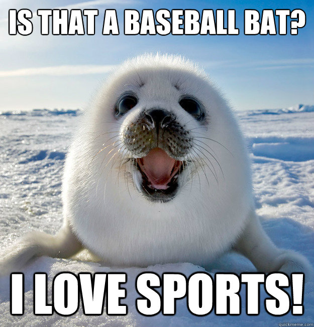 Is that a baseball bat? I LOVE SPORTS!