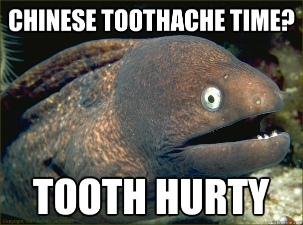 chinese toothache time? tooth hurty - chinese toothache time? tooth hurty  Bad Joke Eel