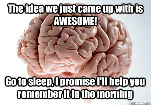 The idea we just came up with is AWESOME! Go to sleep, I promise I'll help you remember it in the morning  - The idea we just came up with is AWESOME! Go to sleep, I promise I'll help you remember it in the morning   Scumbag Brain