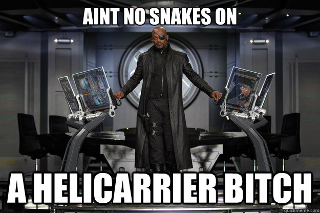 aint no snakes on a helicarrier bitch - aint no snakes on a helicarrier bitch  Misc