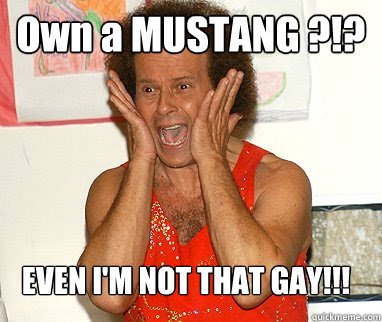 Own a MUSTANG ?!? EVEN I'M NOT THAT GAY!!!  Richard Simmons