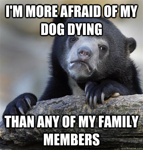 I'm more afraid of my dog dying Than any of my family members - I'm more afraid of my dog dying Than any of my family members  confessionbear