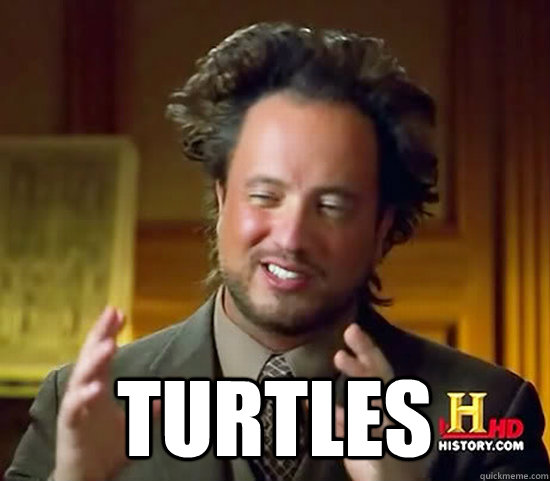Turtles -  Turtles  Ancient Aliens