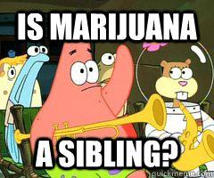 is marijuana a sibling?