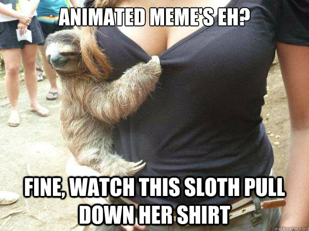 Animated meme's eh? fine, watch this sloth pull down her ...