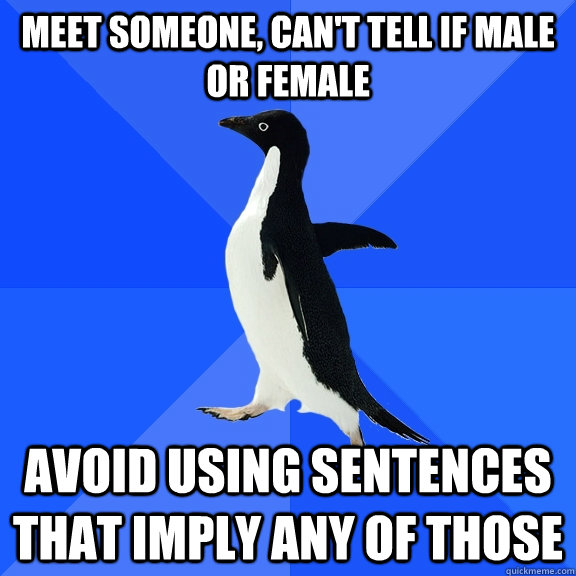 meet someone, can't tell if male or female avoid using sentences that imply any of those - meet someone, can't tell if male or female avoid using sentences that imply any of those  Socially Awkward Penguin