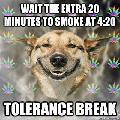 wait the extra 20 minutes to smoke at 4:20 tolerance break - wait the extra 20 minutes to smoke at 4:20 tolerance break  Stoner Dog