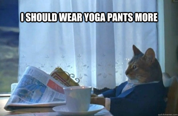 I should wear yoga pants more  - I should wear yoga pants more   Sophisticated Cat