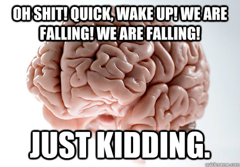 Oh shit! quick, wake up! we are falling! we are falling! just kidding.  - Oh shit! quick, wake up! we are falling! we are falling! just kidding.   Scumbag Brain