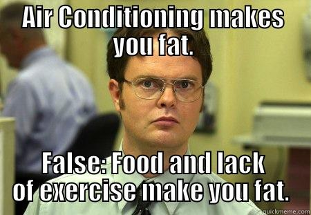 AIR CONDITIONING MAKES YOU FAT. FALSE: FOOD AND LACK OF EXERCISE MAKE YOU FAT.  Dwight