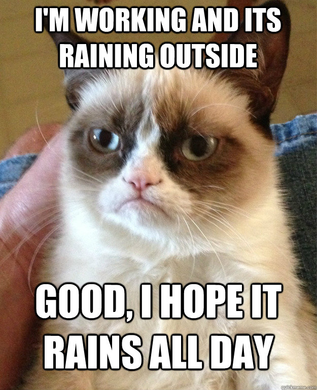 I'm working and its raining outside Good, i hope it rains all day - I'm working and its raining outside Good, i hope it rains all day  Grumpy Cat