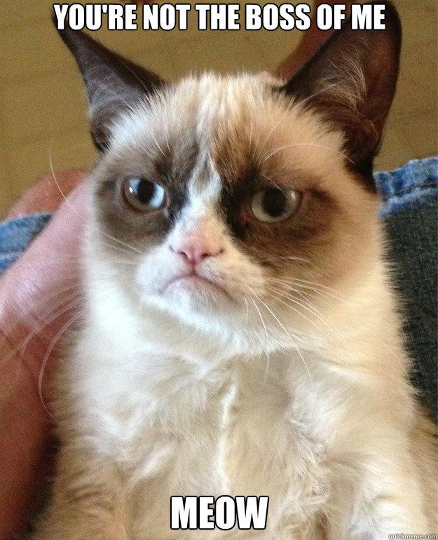 e3efc8469d9ba436e8b8040828cee378081d57ff628da4cba9c63137947cdce6 you're not the boss of me meow grumpy cat quickmeme,You Re Not The Boss Of Me Meme