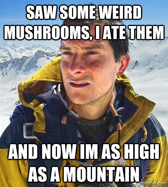 saw some weird mushrooms, i ate them and now im as high as a mountain