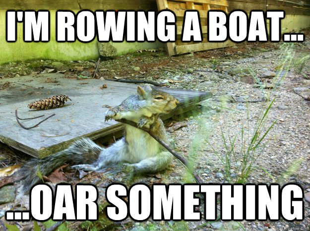 I'm rowing a boat... ...Oar something - I'm rowing a boat... ...Oar something  Confused Squirrel