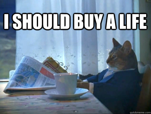 I should buy a life - I should buy a life  1% Cat