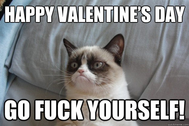 Happy Valentine's Day GO FUCK YOURSELF! - Happy Valentine's Day GO FUCK YOURSELF!  Misc