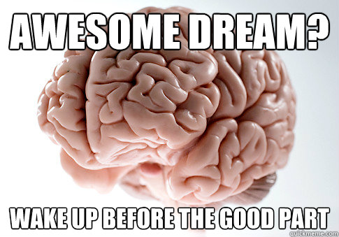 Awesome dream? Wake up before the good part - Awesome dream? Wake up before the good part  Scumbag Brain
