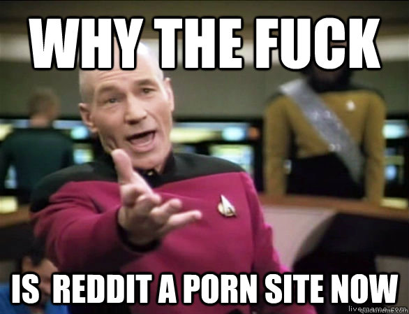 why the fuck is  reddit a porn site now - why the fuck is  reddit a porn site now  Annoyed Picard HD