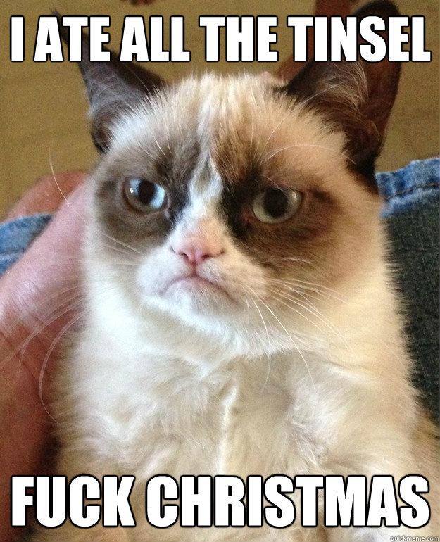 I ate all the tinsel fuck christmas - Grumpy Cat - quickmeme
