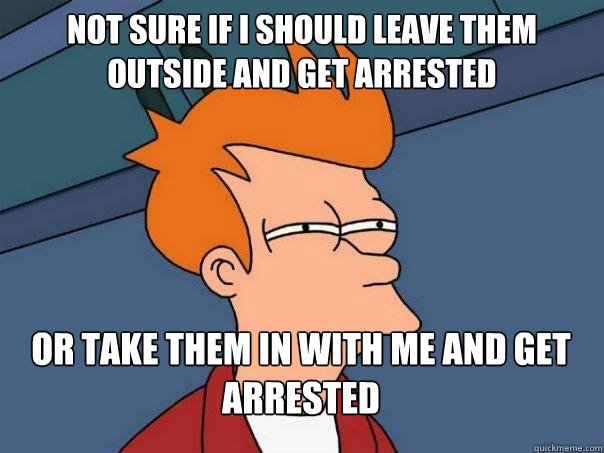 Not sure if I should leave them outside and get arrested Or take them in with me and get arrested - Not sure if I should leave them outside and get arrested Or take them in with me and get arrested  Futurama Fry