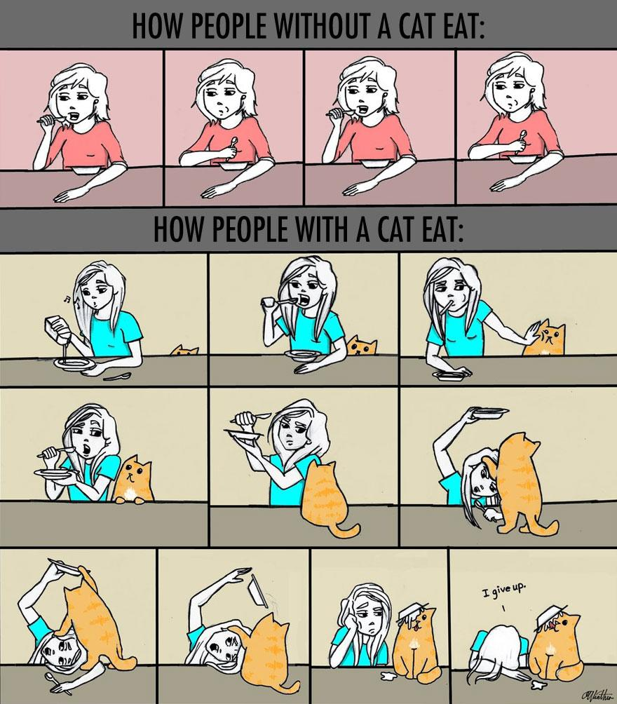 How People Without Cats Eat VS. How People With A Cat Eat... -   Misc
