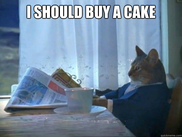 I should buy a cake  - I should buy a cake   morning realization newspaper cat meme