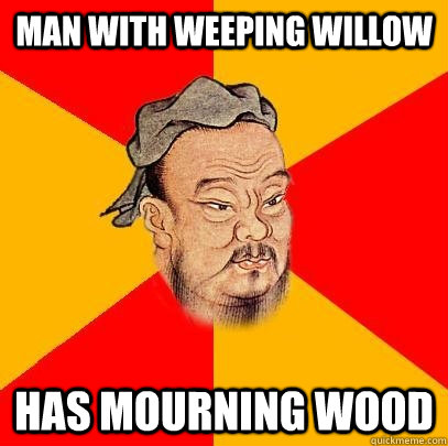 Man with weeping willow Has mourning wood - Man with weeping willow Has mourning wood  Confucius says