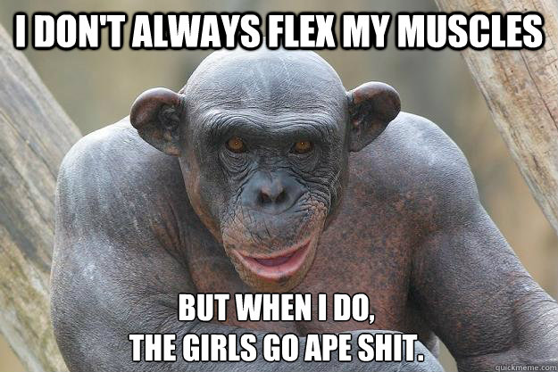 I don't always flex my muscles but when I do,  the girls go ape shit.  The Most Interesting Chimp In The World