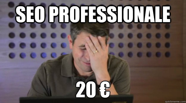 SEO professionale 20 € - SEO professionale 20 €  Facepalm Matt Cutts