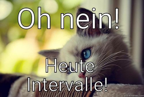 OH NEIN! HEUTE INTERVALLE!  First World Problems Cat