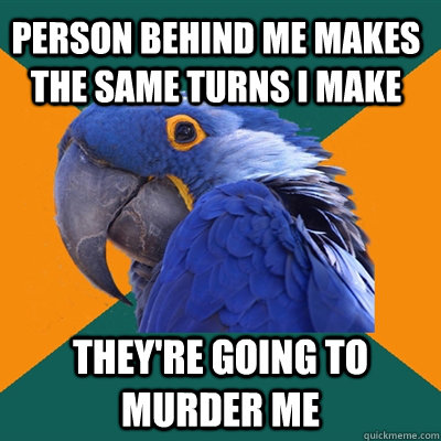 Person behind me makes the same turns I make They're going to murder me - Person behind me makes the same turns I make They're going to murder me  Paranoid Parrot