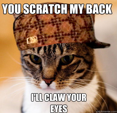 You scratch my back I'll claw your eyes - You scratch my back I'll claw your eyes  Scumbag Cat