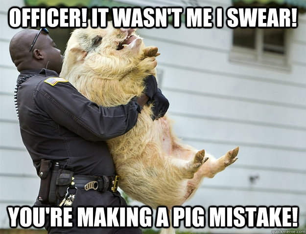 Officer It Wasnt Me I Swear Youre Making A Pig Mistake