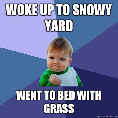 Woke up to snowy yard Went to bed with grass - Woke up to snowy yard Went to bed with grass  Success Kid