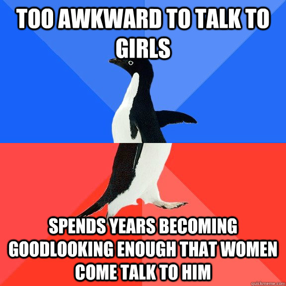 too awkward to talk to girls spends years becoming goodlooking enough that women come talk to him - too awkward to talk to girls spends years becoming goodlooking enough that women come talk to him  Socially Awkward Awesome Penguin