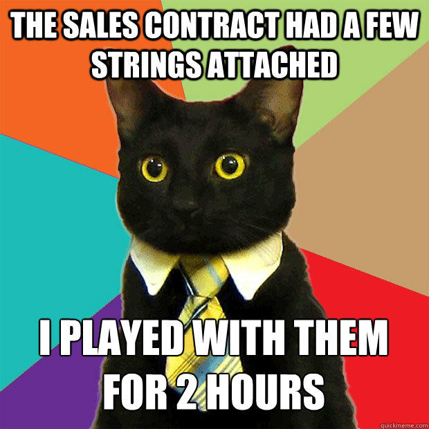 The sales contract had a few strings attached I played with them  for 2 hours - The sales contract had a few strings attached I played with them  for 2 hours  Business Cat