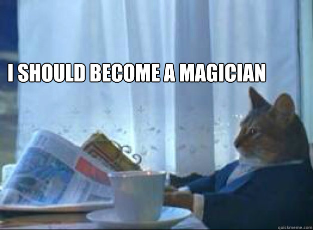i should become a magician  - i should become a magician   I should buy a boat cat