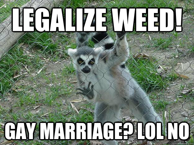 legalize weed! gay marriage? lol no  Libertarian Lemur