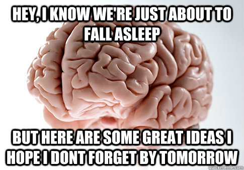 Hey, I know we're just about to fall asleep but here are some great ideas i hope i dont forget by tomorrow - Hey, I know we're just about to fall asleep but here are some great ideas i hope i dont forget by tomorrow  Scumbag Brain