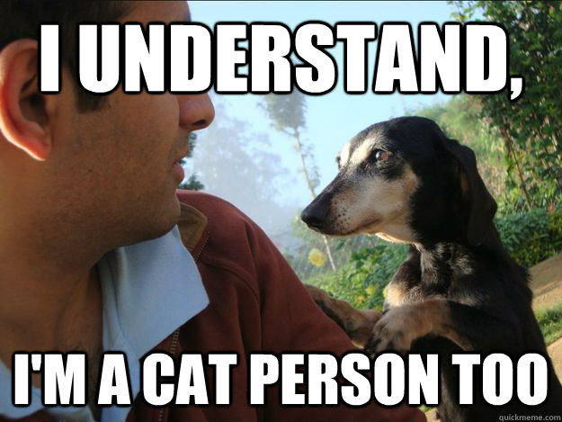 I understand, I'm a cat person too